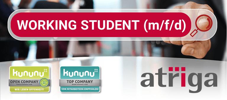 Working Student (m/f/d) Job Offer